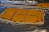 another layer of cheese (doesn't need to cover every square inch, since it spreads)